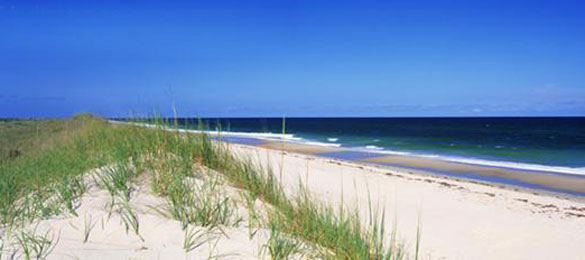 pawleys-island-real-estate-contact